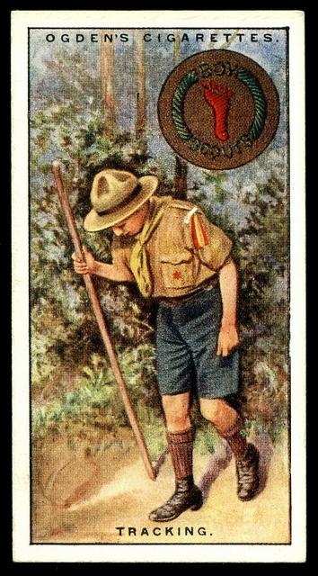 9de57da34aa7ae28a7e0476a75c4341a--boy-scouting-trading-cards