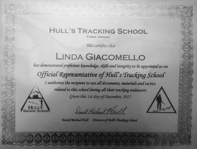 Official Representative of Hull's Tracking School