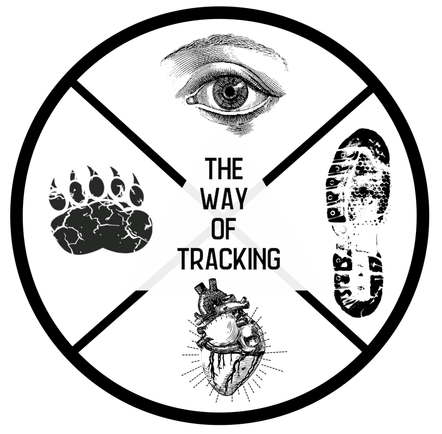 THE WAY OF TRACKING