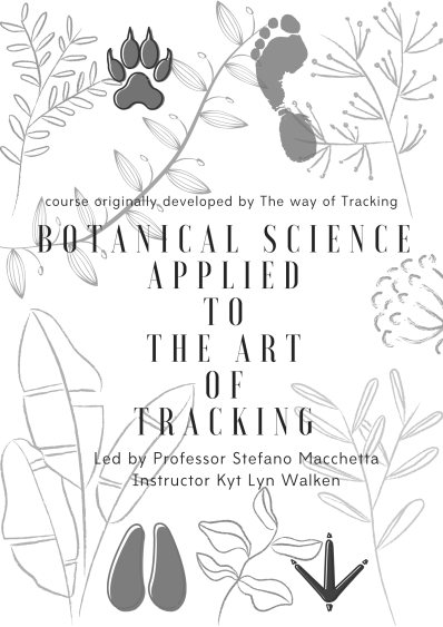 Botany applied to Tracking (2).png
