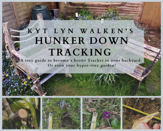 HUNKER DOWN TRACKING -eng-
